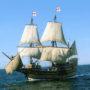 Mayflower appelé aussi « Fleur de mai »